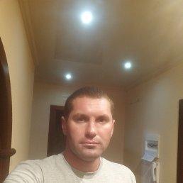 Михаил, 32 года, Ростов-на-Дону