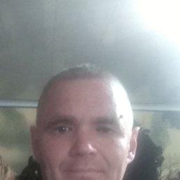 Владимир, 44 года, Семикаракорск