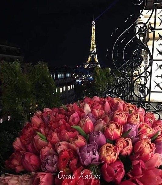 Мужчины, дарите чаще своим дамам цветы - 4