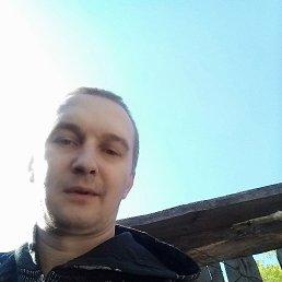 Дмитрий, 39 лет, Курск