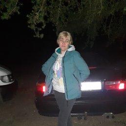 Елена, 45 лет, Калининград
