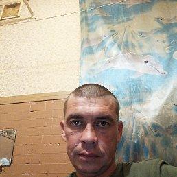 Александр, 41 год, Альметьевск