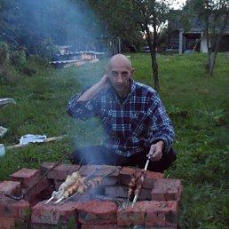 Евгений, 40 лет, Москва