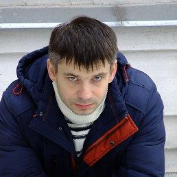 вася, 34 года, Калининград