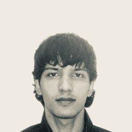 Холик, 27 лет, Подольск