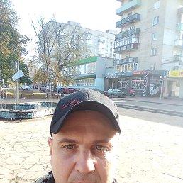 Леша, 37 лет, Шостка