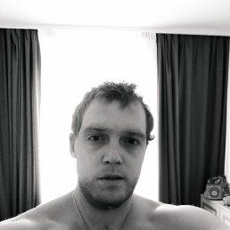 Дмитрий, 29 лет, Белая Церковь
