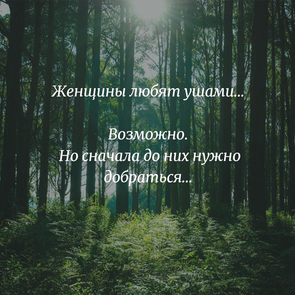 Олег - 1 сентября 2020 в 14:59