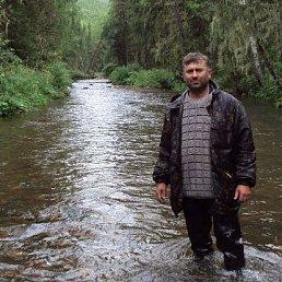 Александр, 50 лет, Зеленогорск