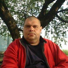 Максим, 40 лет, Селидово