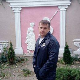 Анатолий, 37 лет, Зерноград