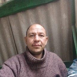 Анатолй, 41 год, Умань
