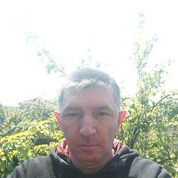 Дмитрий, 42 года, Апостолово