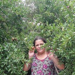 Светлана, 45 лет, Махачкала