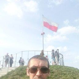 Vova, 36 лет, Тячев