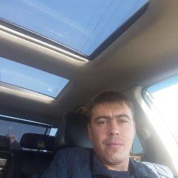 Владимир, 36 лет, Рубцовск