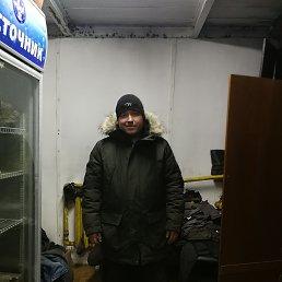 Рома, 33 года, Владивосток