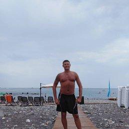 Александр, 43 года, Краснодар