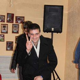 Алексей, 38 лет, Новороссийск