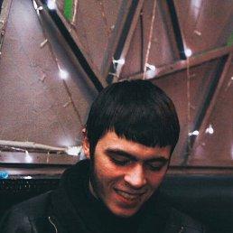 Адам, 22 года, Томск