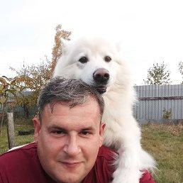 Сергей, Москва, 46 лет