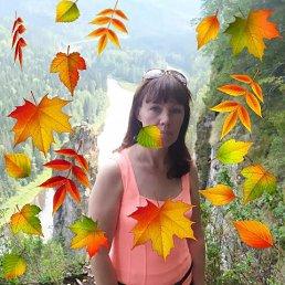 Елена, 43 года, Лесной