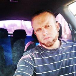 Андрей, 28 лет, Барнаул