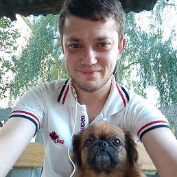 Дмитрий, 29 лет, Константиновка