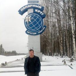 Юрий, 44 года, Кандалакша