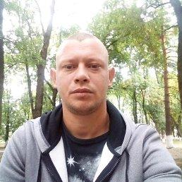Саша, 29 лет, Майкоп