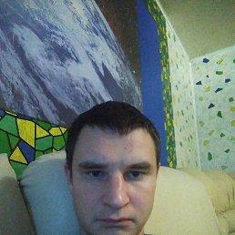 Миша, 33 года, Томск