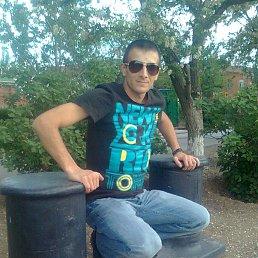 Александр, 36 лет, Астрахань