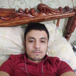 Руслан, 31 год, Долгопрудный