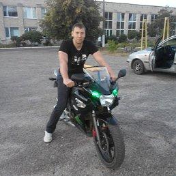 Николай, 37 лет, Изюм
