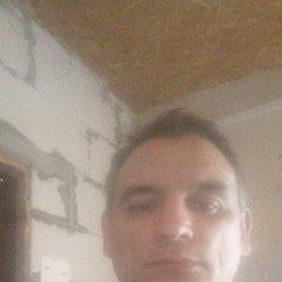 Андрей, 45 лет, Светлогорск