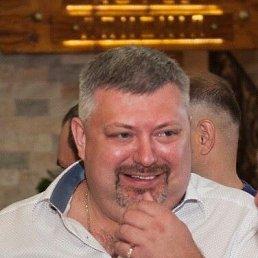 Андрей, 44 года, Сочи