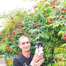 Владимир, 45 лет, Бровары