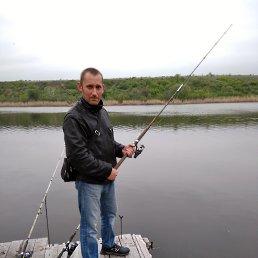 Николай, 36 лет, Белая Калитва