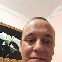 Александр, 40 лет, Барнаул