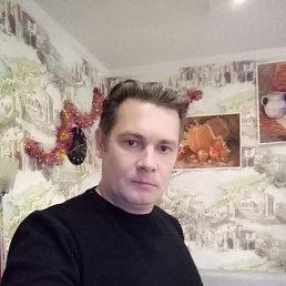 Сергей, 39 лет, Сальск