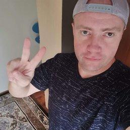 Роман, 40 лет, Михайловск