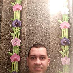 Леонид, 34 года, Кандалакша