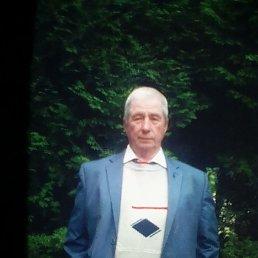 Вячеслав, 64 года, Смоленск