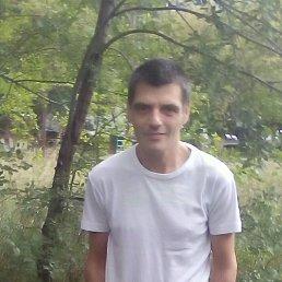 Дима, 44 года, Курган