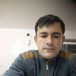 Parviz, 33 года, Тараща