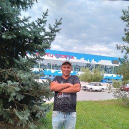 Дима, 44 года, Белая Калитва