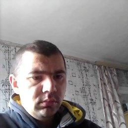 Рома, 25 лет, Новошахтинск