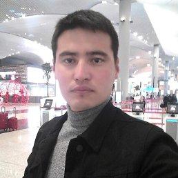 Ali, 31 год, Томилино