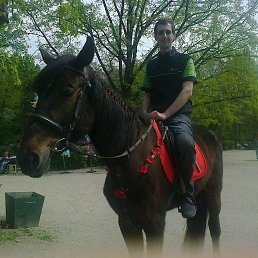 Вадим, 33 года, Мелитополь