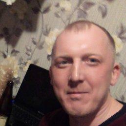 Александр, Ростов-на-Дону, 38 лет